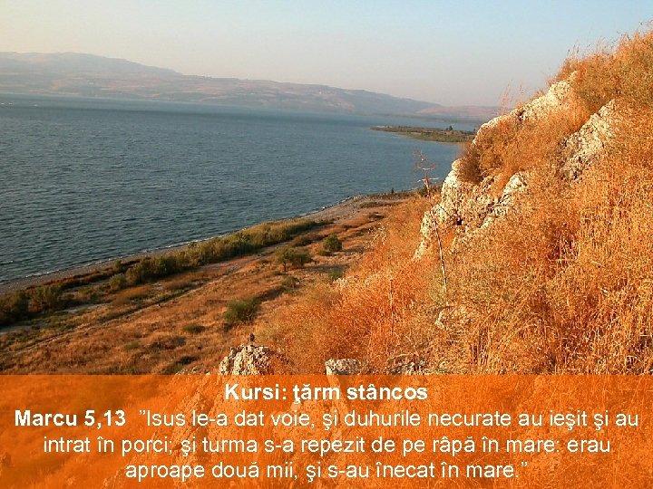 """Kursi: ţărm stâncos Marcu 5, 13 """"Isus le-a dat voie, şi duhurile necurate au"""