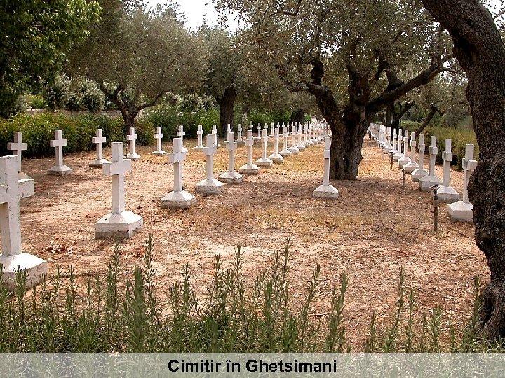 Cimitir în Ghetsimani