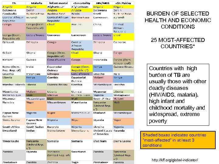 BURDEN OF SELECTED HEALTH AND ECONOMIC CONDITIONS 25 MOST-AFFECTED COUNTRIES* Countries with high burden