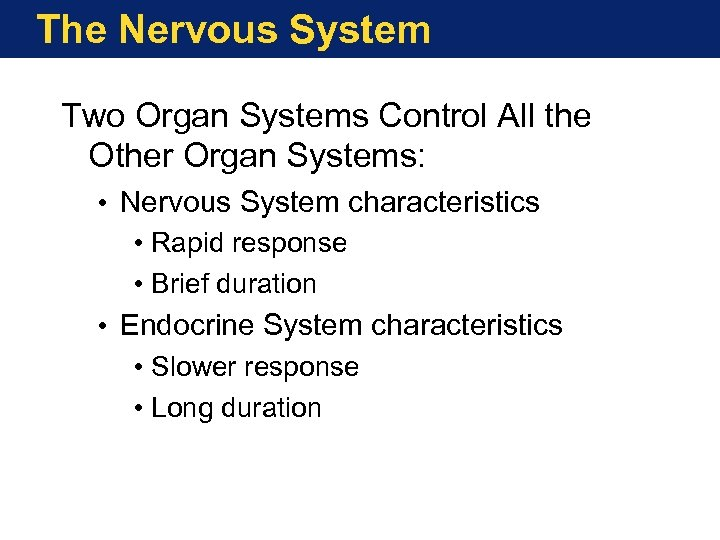 The Nervous System Two Organ Systems Control All the Other Organ Systems: • Nervous