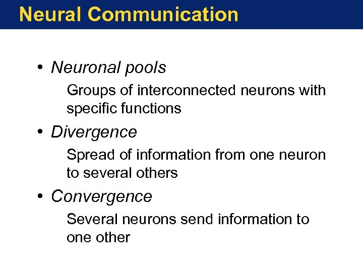 Neural Communication • Neuronal pools Groups of interconnected neurons with specific functions • Divergence