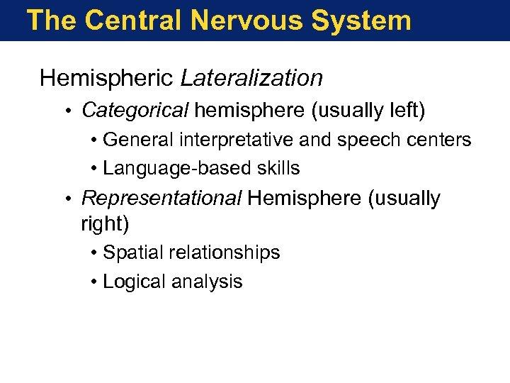 The Central Nervous System Hemispheric Lateralization • Categorical hemisphere (usually left) • General interpretative
