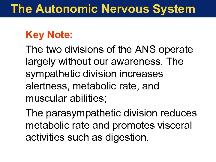 The Autonomic Nervous System Key Note: The two divisions of the ANS operate largely