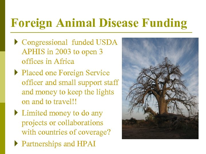 Foreign Animal Disease Funding } Congressional funded USDA APHIS in 2003 to open 3