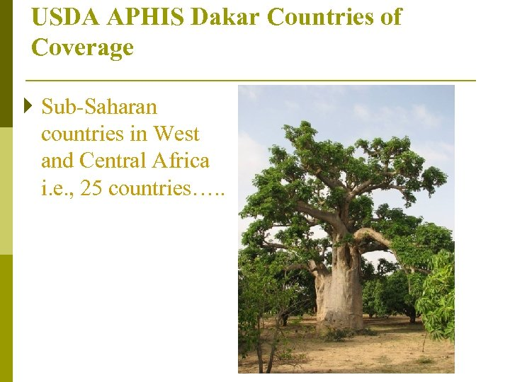 USDA APHIS Dakar Countries of Coverage } Sub-Saharan countries in West and Central Africa