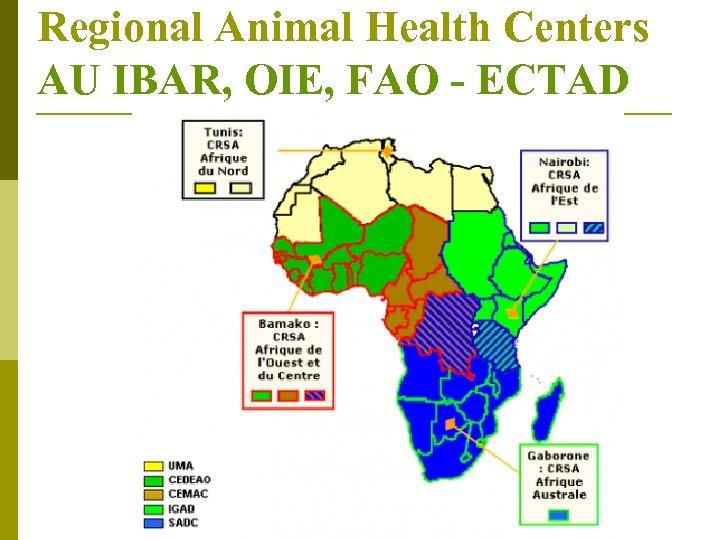 Regional Animal Health Centers AU IBAR, OIE, FAO - ECTAD