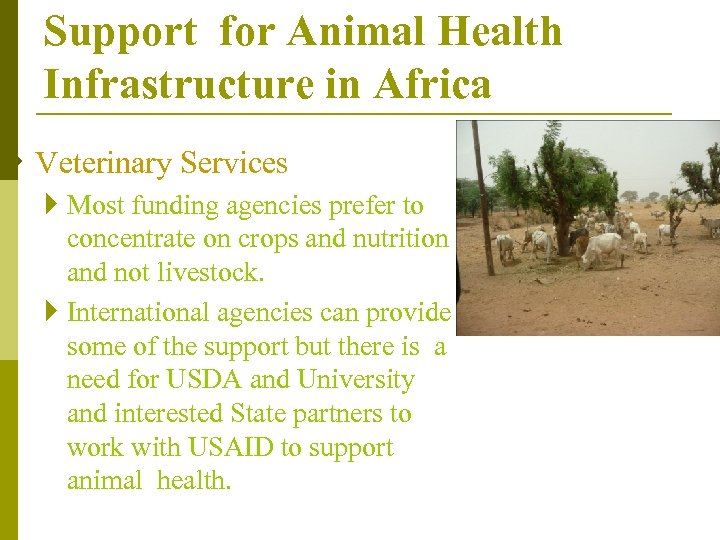 Support for Animal Health Infrastructure in Africa } Veterinary Services } Most funding agencies