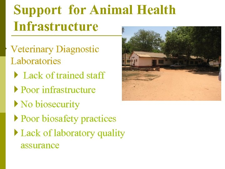 Support for Animal Health Infrastructure } Veterinary Diagnostic Laboratories } Lack of trained staff