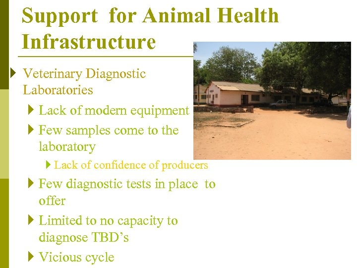 Support for Animal Health Infrastructure } Veterinary Diagnostic Laboratories } Lack of modern equipment