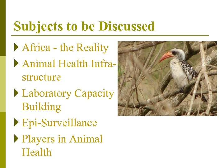 Subjects to be Discussed } Africa - the Reality } Animal Health Infrastructure }