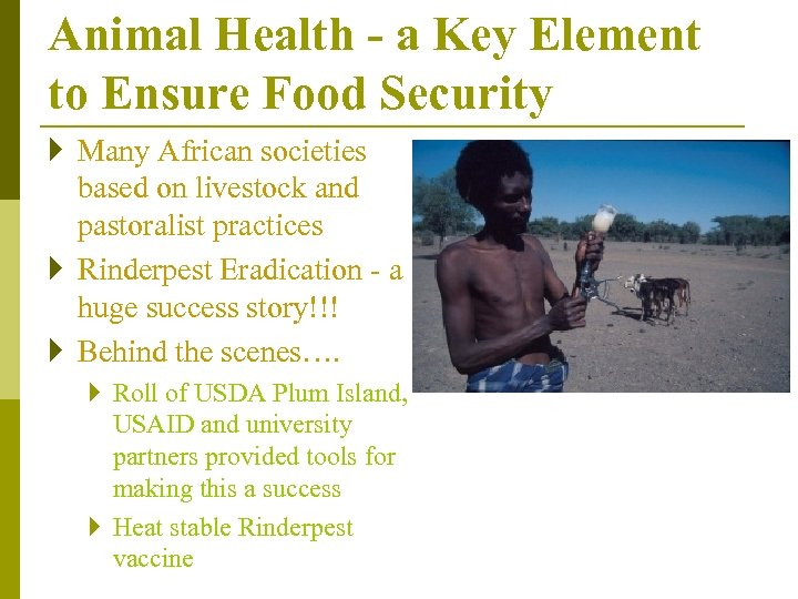Animal Health - a Key Element to Ensure Food Security } Many African societies