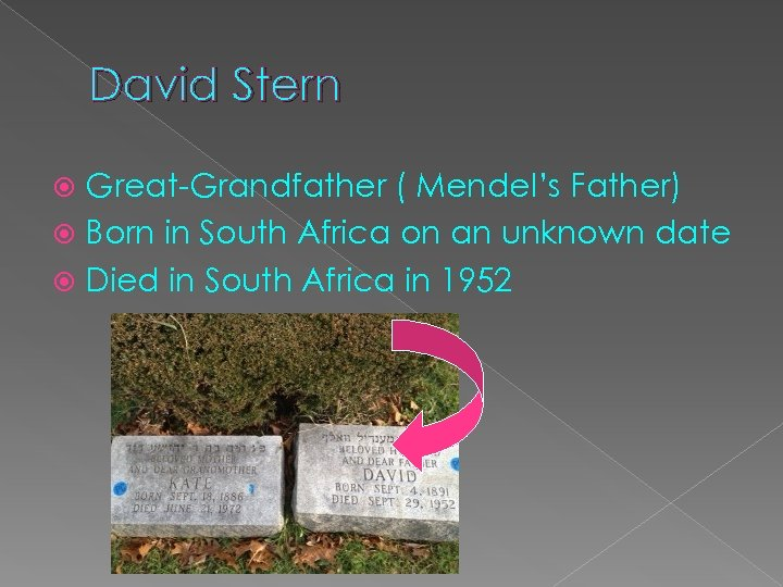 David Stern Great-Grandfather ( Mendel's Father) Born in South Africa on an unknown date