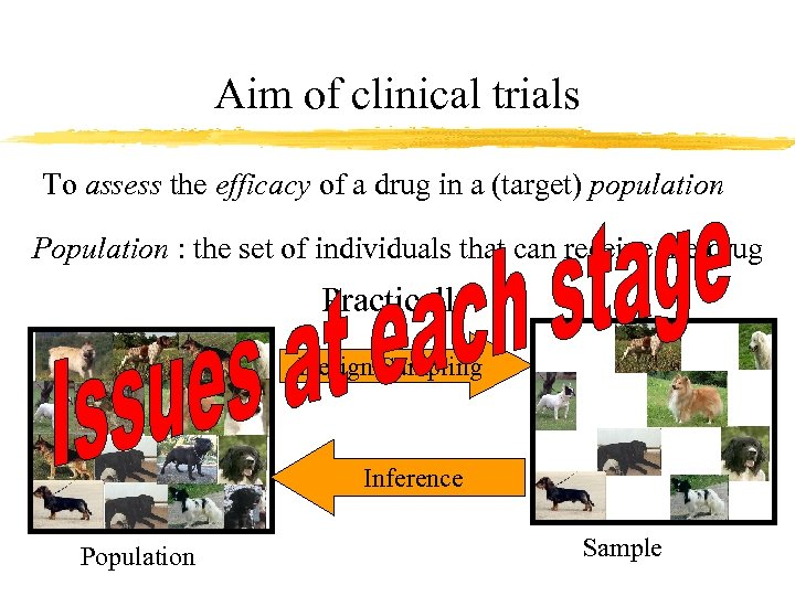 Aim of clinical trials To assess the efficacy of a drug in a (target)
