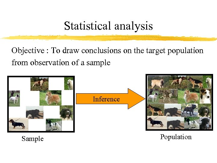 Statistical analysis Objective : To draw conclusions on the target population from observation of