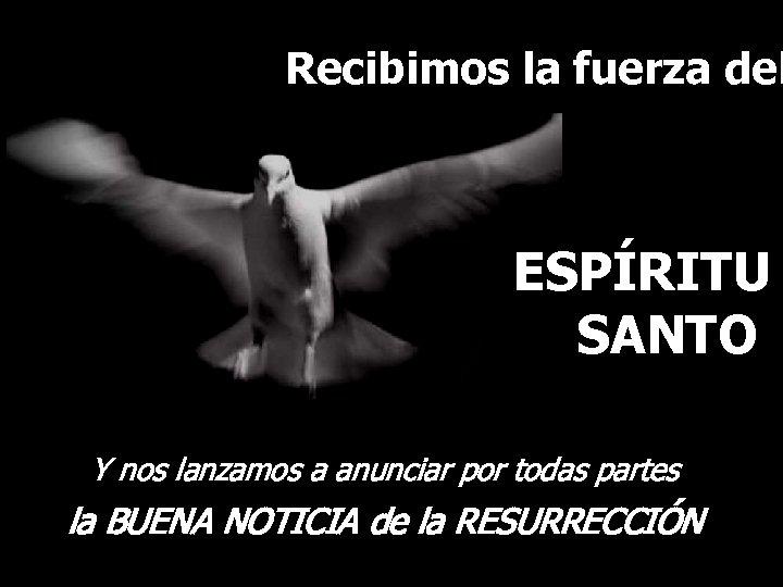 Recibimos la fuerza del ESPÍRITU SANTO Y nos lanzamos a anunciar por todas partes