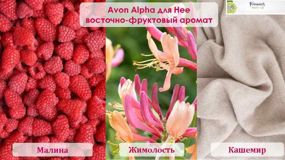 Avon Alpha для Нее восточно-фруктовый аромат Малина Жимолость Кашемир