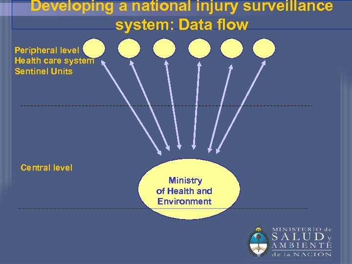 Developing a national injury surveillance system: Data flow Peripheral level Health care system Sentinel
