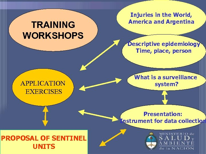 TRAINING WORKSHOPS APPLICATION EXERCISES Injuries in the World, America and Argentina Descriptive epidemiology Time,