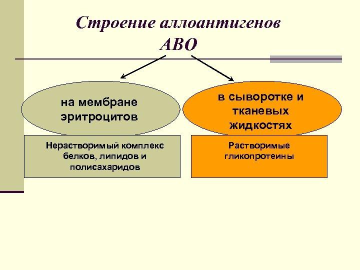 Строение аллоантигенов АВО на мембране эритроцитов Нерастворимый комплекс белков, липидов и полисахаридов в сыворотке