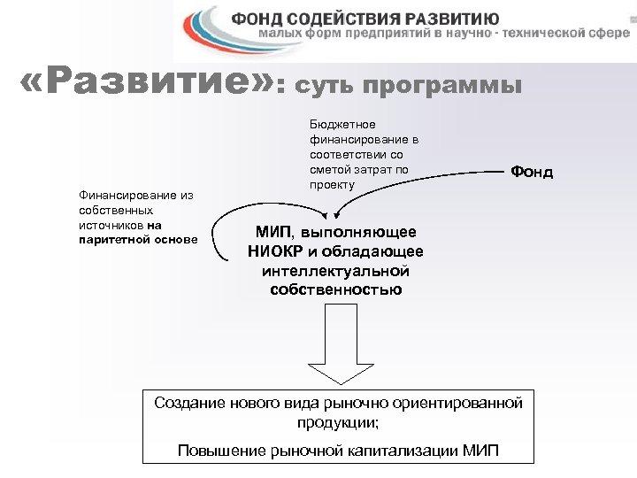 «Развитие» : суть программы Финансирование из собственных источников на паритетной основе Бюджетное финансирование