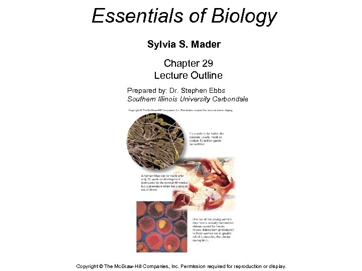 Essentials of Biology Sylvia S. Mader Chapter 29 Lecture Outline Prepared by: Dr. Stephen