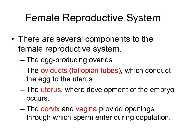 Female Reproductive System • There are several components to the female reproductive system. –
