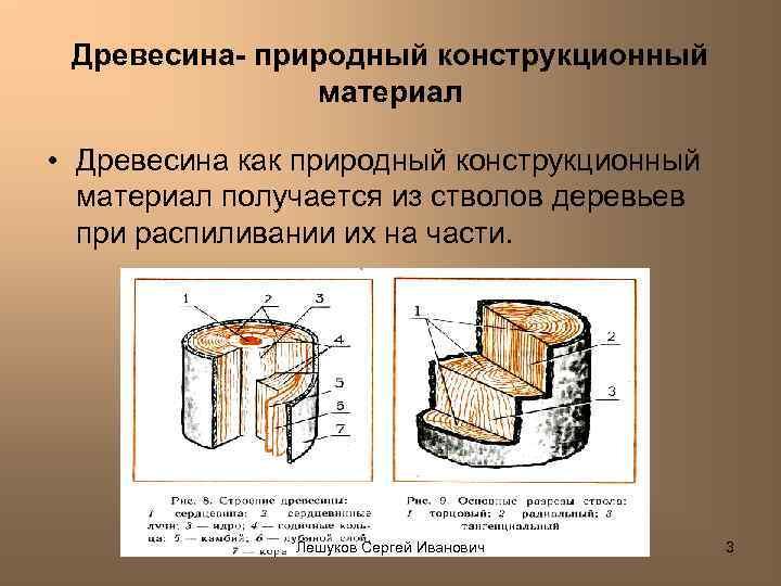 Древесина- природный конструкционный материал • Древесина как природный конструкционный материал получается из стволов деревьев