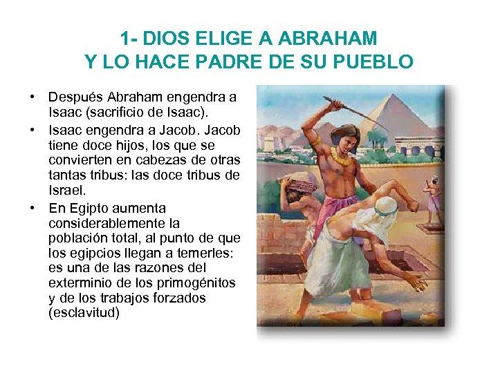 1 - DIOS ELIGE A ABRAHAM Y LO HACE PADRE DE SU PUEBLO •