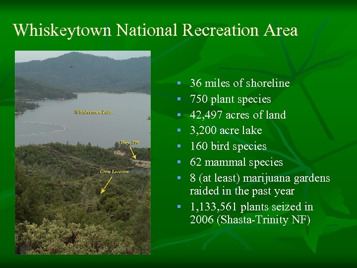 Whiskeytown National Recreation Area 36 miles of shoreline 750 plant species 42, 497 acres