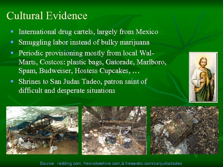 Cultural Evidence § International drug cartels, largely from Mexico § Smuggling labor instead of