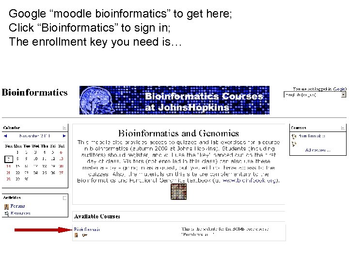 """Google """"moodle bioinformatics"""" to get here; Click """"Bioinformatics"""" to sign in; The enrollment key"""
