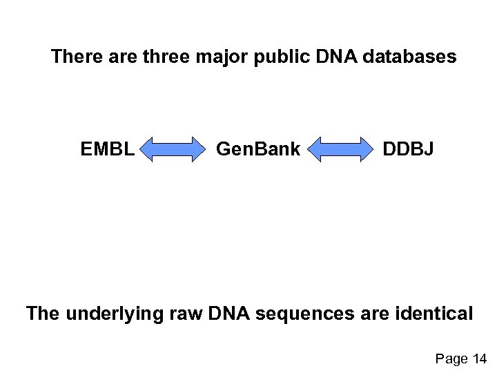 There are three major public DNA databases EMBL Gen. Bank DDBJ The underlying raw
