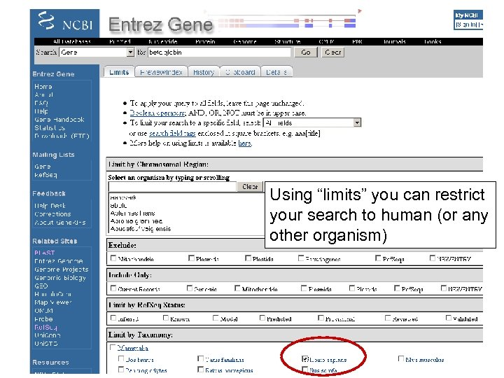 """Using """"limits"""" you can restrict your search to human (or any other organism)"""