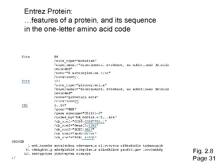 Entrez Protein: …features of a protein, and its sequence in the one-letter amino acid