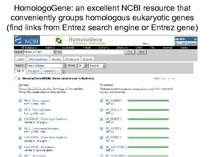 Homologo. Gene: an excellent NCBI resource that conveniently groups homologous eukaryotic genes (find links
