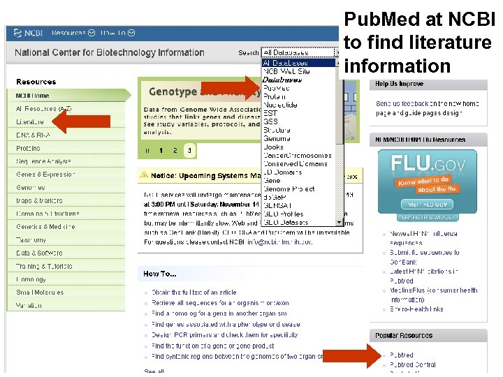 Pub. Med at NCBI to find literature information