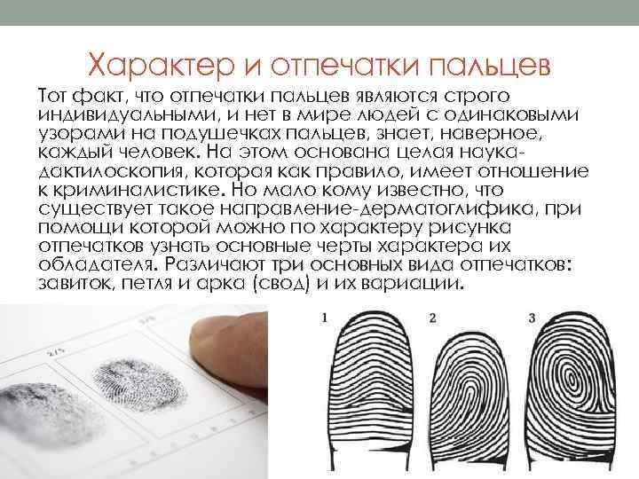 Характер и отпечатки пальцев Тот факт, что отпечатки пальцев являются строго индивидуальными, и нет