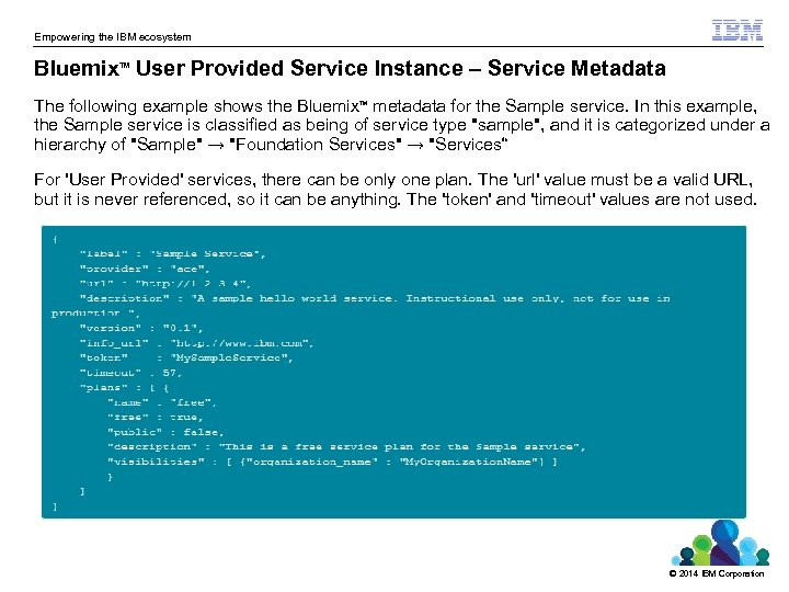 Empowering the IBM ecosystem Bluemix User Provided Service Instance – Service Metadata TM The