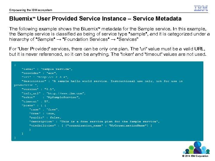 Empowering the IBM ecosystem Bluemix User Provided Service Instance – Service Metadata TM The