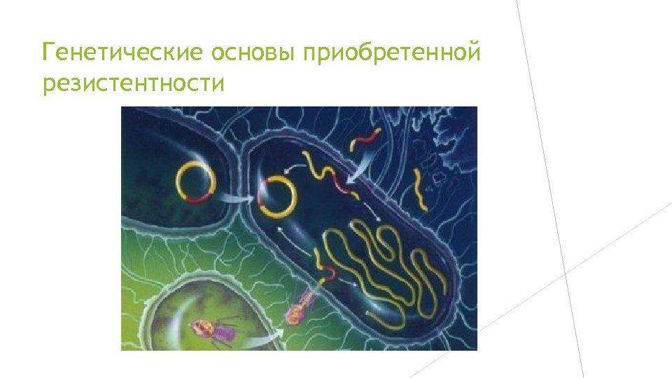 Генетические основы приобретенной резистентности