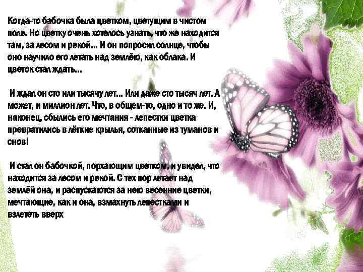 Когда-то бабочка была цветком, цветущим в чистом поле. Но цветку очень хотелось узнать, что
