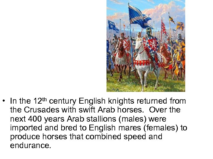 • In the 12 th century English knights returned from the Crusades with