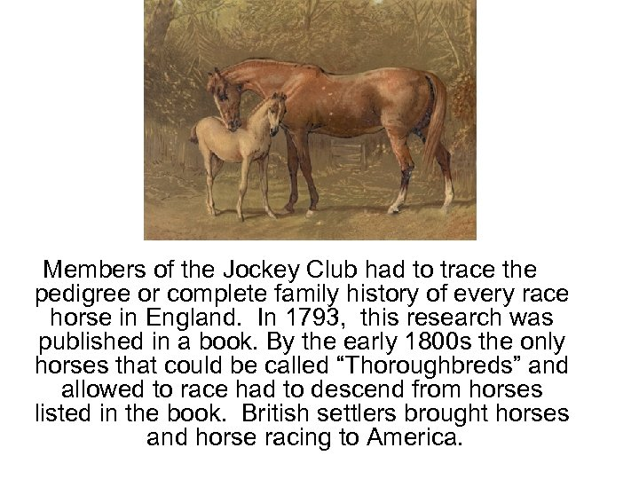Members of the Jockey Club had to trace the pedigree or complete family history