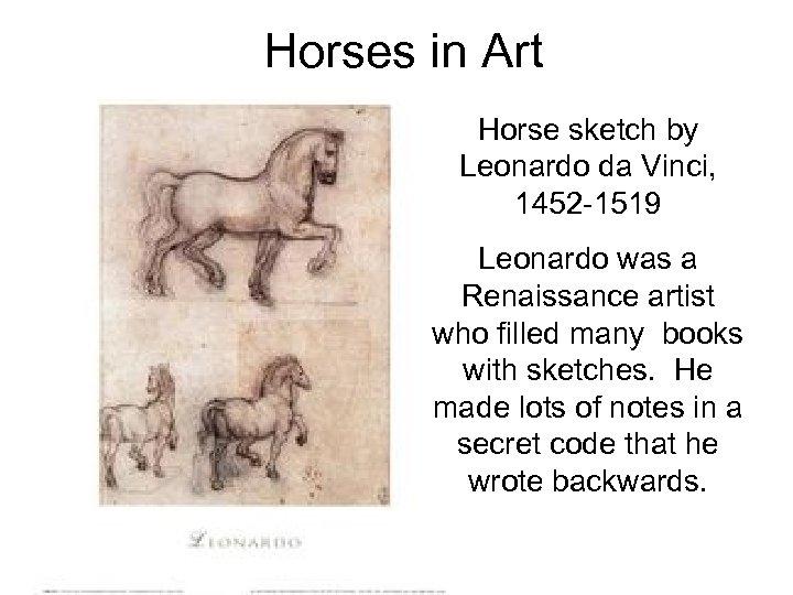 Horses in Art Horse sketch by Leonardo da Vinci, 1452 -1519 Leonardo was a