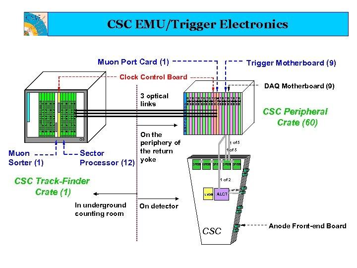 CSC EMU/Trigger Electronics Muon Port Card (1) Trigger Motherboard (9) Clock Control Board DAQ