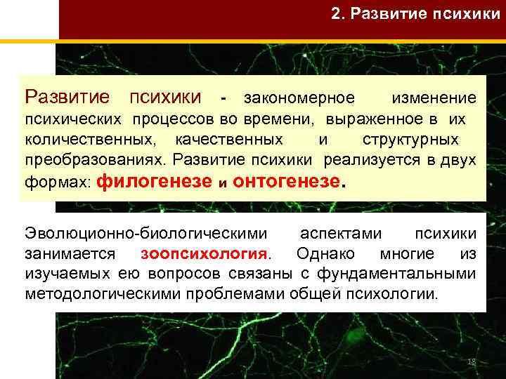 2. Развитие психики - закономерное изменение психических процессов во времени, выраженное в их количественных,