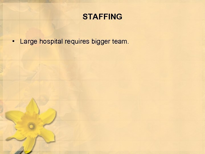 STAFFING • Large hospital requires bigger team.