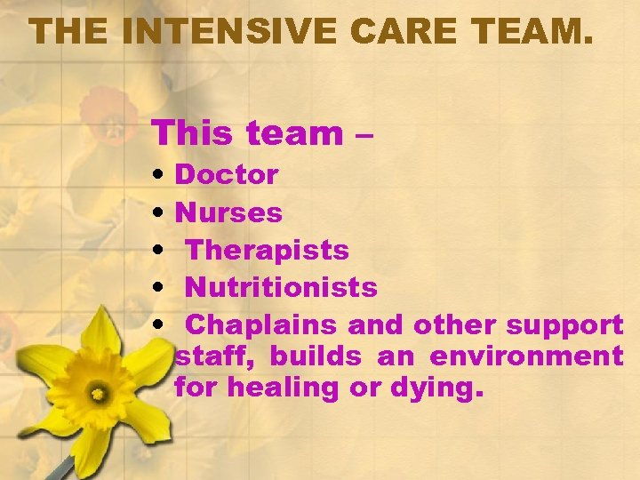 THE INTENSIVE CARE TEAM. This team – • • • Doctor Nurses Therapists Nutritionists