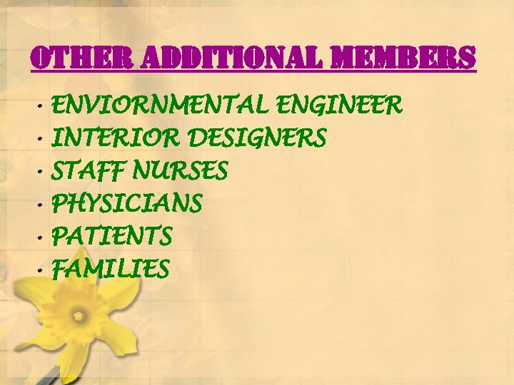 other additional members • ENVIORNMENTAL ENGINEER • INTERIOR DESIGNERS • STAFF NURSES • PHYSICIANS