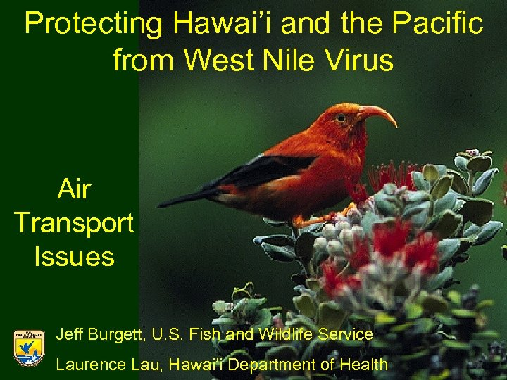 Protecting Hawai'i and the Pacific from West Nile Virus Air Transport Issues Jeff Burgett,